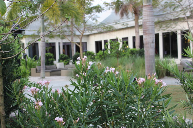 The Club Med Sandpiper Bay - building2