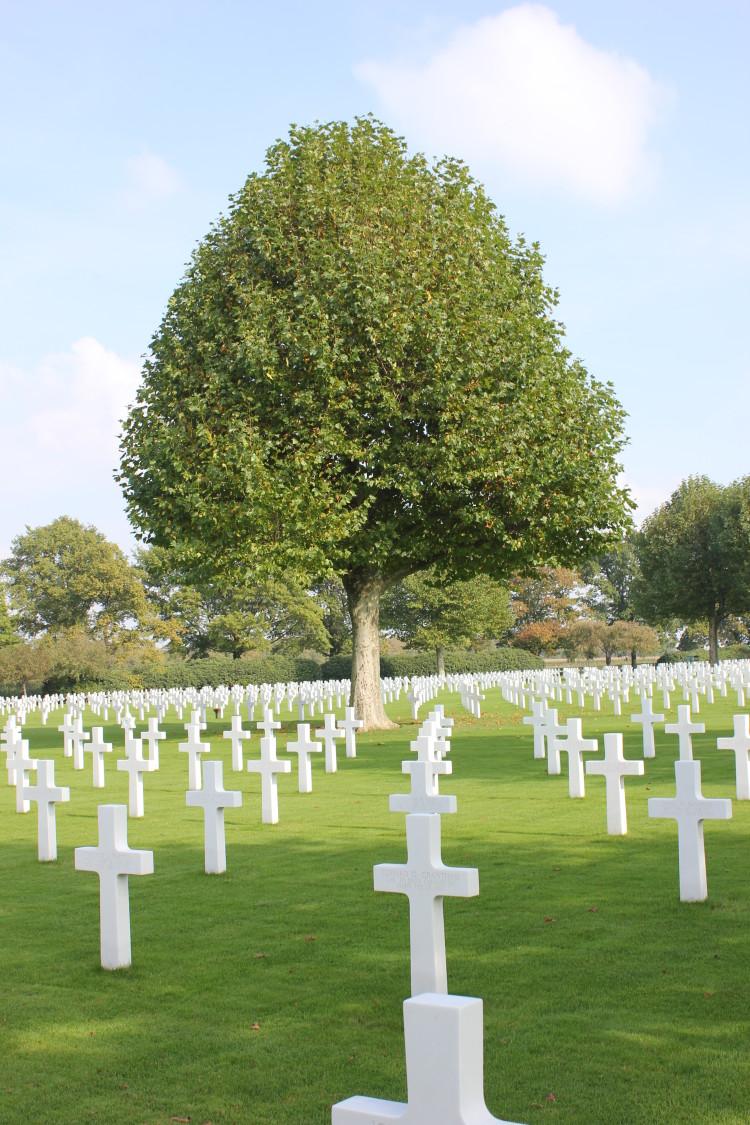IMG_9206 Netherlands American Cemetery